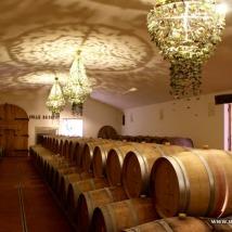 Il tocco, tocco collebereto, colle bereto, chianti classico, wine tasting, vintage wine tasting, degustazione vecchie annate, vecchie annate, degustazione chianti, strada del vino, strada del vino chianti, sangiovese in purezza, vigneti, uva, vino, wine, vineyard, tuscany, tuscan wine, vino toscano, vino rosso, red wine, wine sellar, cantina